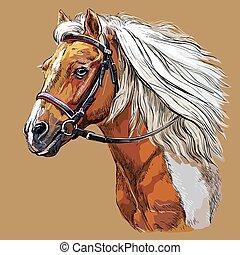 paarde, tekening, 21, vector, verticaal, hand