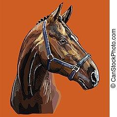 paarde, tekening, vector, verticaal, hand, 27