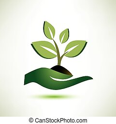 palm, plant, concept, ecologie symbool