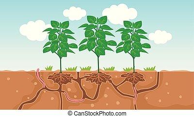 plant, terrein, worm, illustratie, doorgang, water, lucht