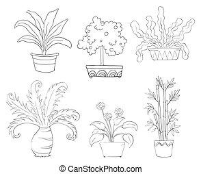 planten, anders, zes, soorten