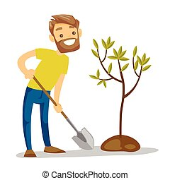 planten, jonge, boom., wite kaukasiër, tuinman