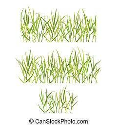realistisch, gras, groene