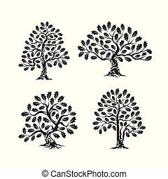 reusachtig, silhouette, heilig, boompje, eik, vrijstaand, achtergrond, logo, witte