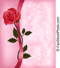 ribbon., roos, valentines, day., vector, achtergrond, vakantie, rood