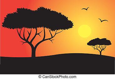 safari, silhouette