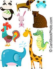schattig, anders, set, dieren, plank, witte