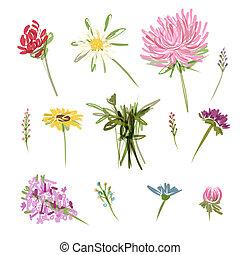 schets, set, tuin, bloemen, ontwerp, jouw