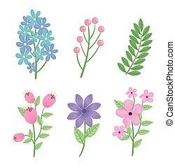 seizoen, vellen, bundel, bloemen, lente, iconen