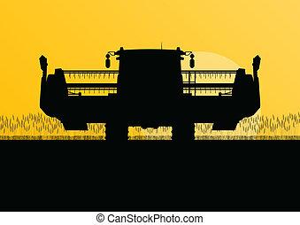 seizoenen, oogster, scène, illustratie, akker, vector, boon, achtergrond, landbouwkundig, samenvoegen, landbouw, landscape