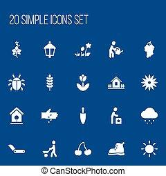 set, symbolen, wagentje, infographic, landbouw, design., aanplant, 20, zonneschijn, zijn, gebruikt, editable, web, omvat, icons., zulk, more., man, beweeglijk, zaad, ui, groenteblik
