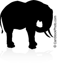 silhouette, safari, dier, elefant
