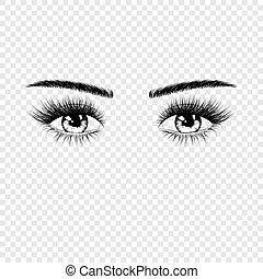 silhouette, vector, eyebrows., eyes, eyelashes, vrijstaand, vrouwlijk, achtergrond, illustratie, transparant