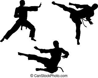 silhouettes, karate, kunst, krijgshaftig