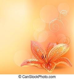 sinaasappel, pastel, lelie, achtergrond, licht