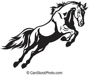 springt, paarde