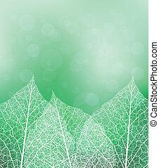 thema, natuur, achtergrond