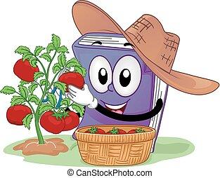 tomaat, boek, oogsten, illustratie, mascotte