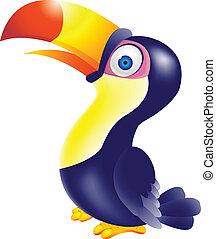 toucan, vogel, spotprent
