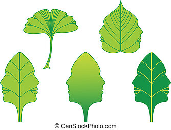 vector, gezichten, bladeren, set, groene