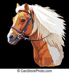 vector, kleurrijke, paarde, verticaal, 21
