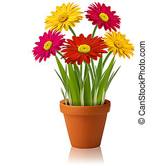 vector, lente, verse bloemen, kleur