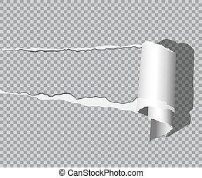 vector, realistisch, gescheurd, vrijstaand, achtergrond., papier, schaduw, transparant
