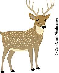 vector, schattig, deer., illustratie
