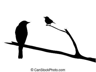 vector, silhouette, vogel, tak
