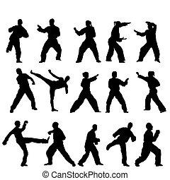 vector, -, taekwondo-fighter