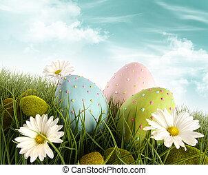 verfraaide eieren, gras, pasen, madeliefjes