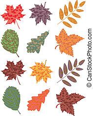 verlof, herfst, set, vector, kleurrijke