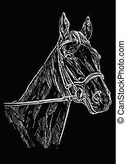 verticaal, paarde, black , 22