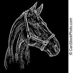 verticaal, paarde, black , 27