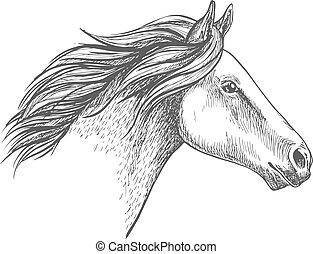 verticaal, paarde, witte , schets, potlood