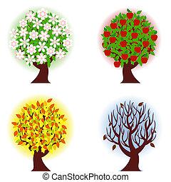 vier, appel, jaargetijden, boom.