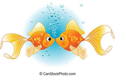 vissen, liefde, twee