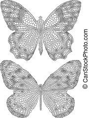 vlinder, delicaat, textuur