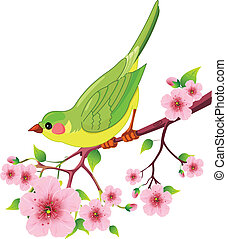 vogel, lente