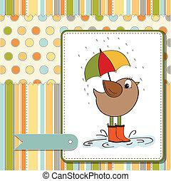 weinig; niet zo(veel), baby, kaart, vogel, douche