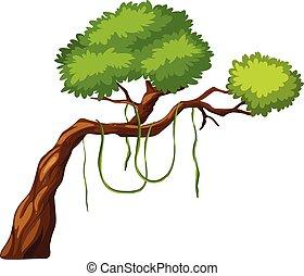 witte , boompje, achtergrond, tak