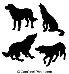 witte , vector, silhouette, dog, achtergrond