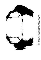 witte , vector, silhouette, kraan, achtergrond