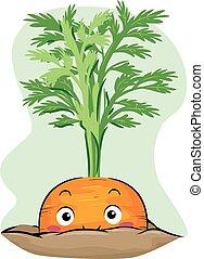 wortel, peeping, illustratie, mascotte