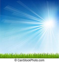 zon, gras, groene, balk